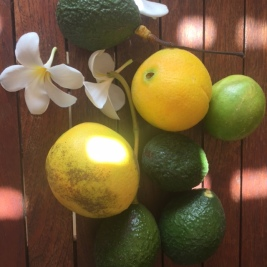 Hawaii Fruit